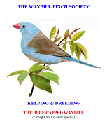 front cover featuring image of a blue-capped waxbill.